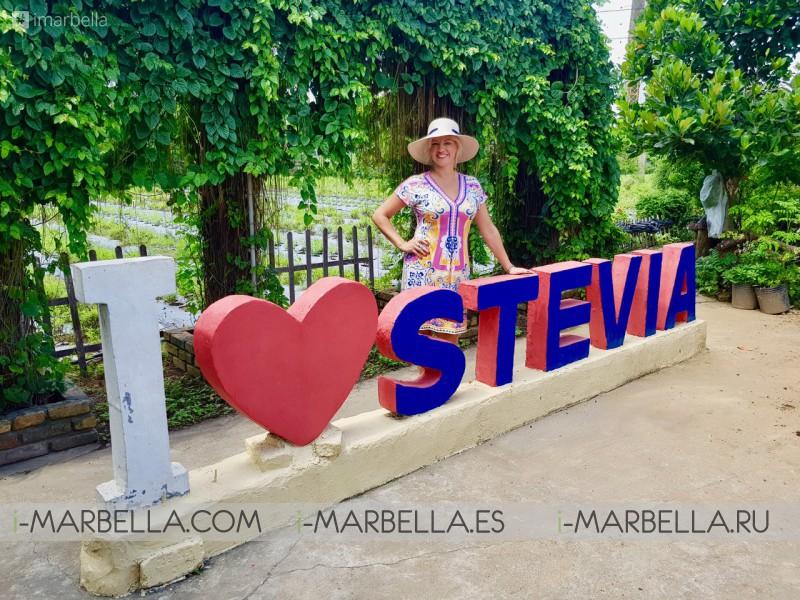 Blog de Annika: Golden Stevia: ¡una vida dulce y saludable es 100% posible!